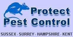 Protect Pest Control, Sussex - Surrey - Hampshire - Kent.